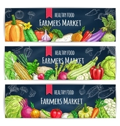 Vegetable banner with veggies sketch on blackboard vector