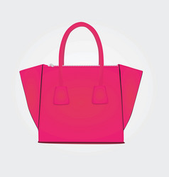 Woman bag in pink color vector