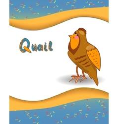 Alphabet letter q and quail vector