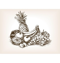 Fruits still life sketch style vector image vector image