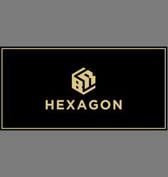br hexagon logo vector image