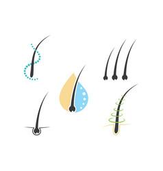 follicle hair treatment vector image