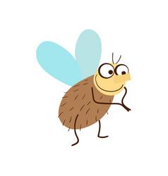 funny fly cartoon vector image
