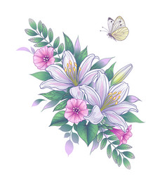 hand drawn white lily flowers and butterfly vector image