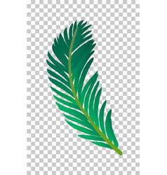 Palm tree leaf vector