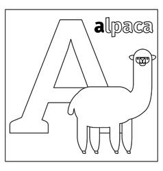 Alpaca letter A coloring page vector image vector image