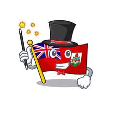 Flag bermuda magician cartoon on pole vector