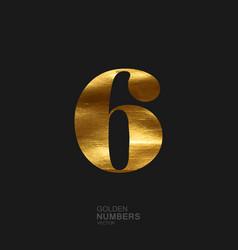 Golden number 6 vector image