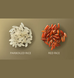White parboiled and red cargo rice vector