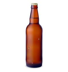 Dark bottle of beer vector image vector image