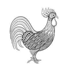 Rooster chicken domestic farmer bird for vector