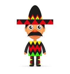 Mexican hat sombrero vector image