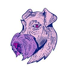 Bingley terrier head etching color vector