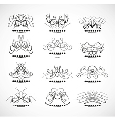 Calligraphic decoration elements for headline vector