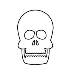 human skull bone care healthy line vector image