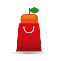 Package buying fruit orange fresh icon vector