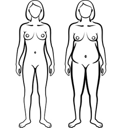 set of female body types vector image vector image