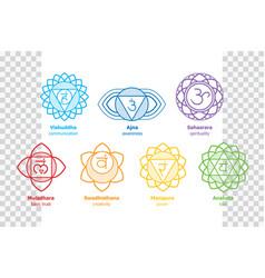 chakras system human body vector image