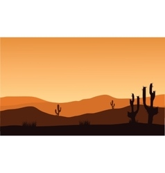 Desert cactus silhouette and sunrise vector