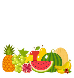 Fruit on a white background isolated vector