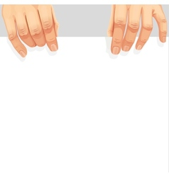 Male hands holding a blank white banner vector image