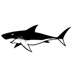shark symbol on white vector image
