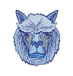 alpaca head etching color vector image
