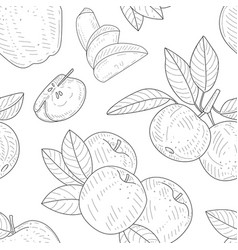 Apple seamless pattern monochrome hand drawn vector