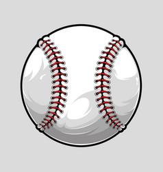 baseball ball isolated on grey background vector image