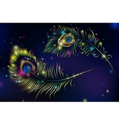 Beautiful peacock feathers on retro vector