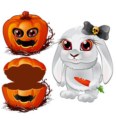 evil white rabbit and halloween pumpkin vector image