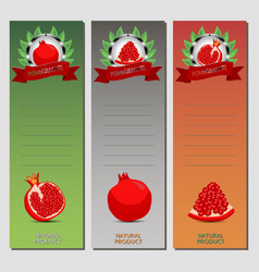 for ripe fruit red pomegranate vector image