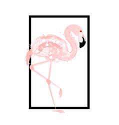 pink flamingo card vector image