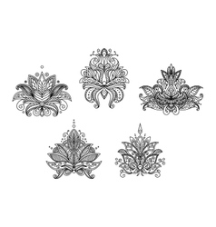 Turkish indian and persian paisley floral motifs vector