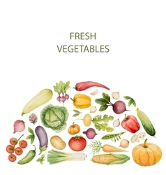 Watercolor organic food template vector