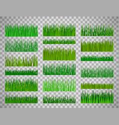 grass border set on transparent background vector image