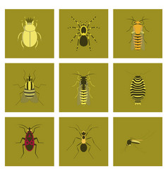 Assembly flat insect wasp soldier vector