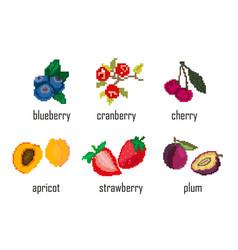Embroidered pixel berries blueberries vector