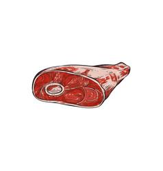fresh beef leg with bone sketch vector image