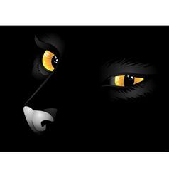 Black cat in the dark4 vector image vector image