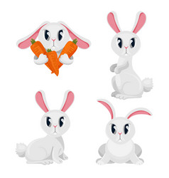 long haired rabbits set in different positions vector image