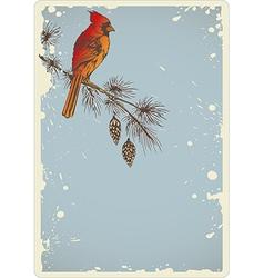 Pine branch and cardinal bird vector image vector image