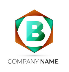 Letter b symbol in the colorful hexagonal vector