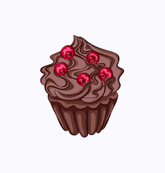 chocolate cupcake with cream ganache and berry vector image