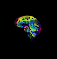 creative image of the brain color icon vector image