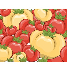 Red and yellow tomatoes background vector