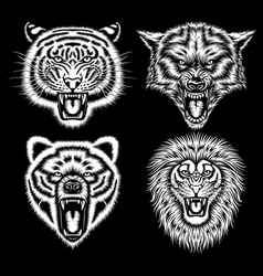 set angry animal heads vector image