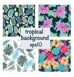 set tropical background exotic leaves and vector image