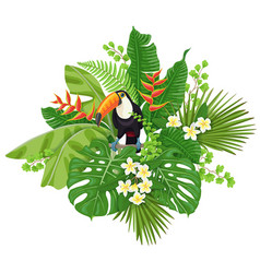 Toucan and tropical plants vector