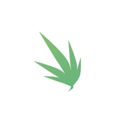Waving cannabis leaf logo icon vector